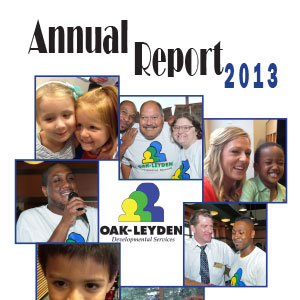 resources-annual-report-2013